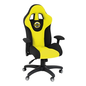 Racing Chair